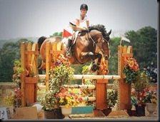 Erin Stiegemeier Walker Horse jumper pictures