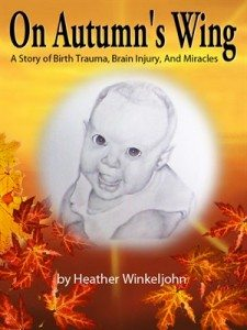 Heather Winkeljohn book