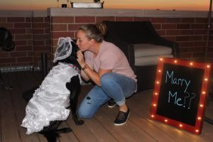Elena Delle Donne girlfriend Amanda Clifton engagement